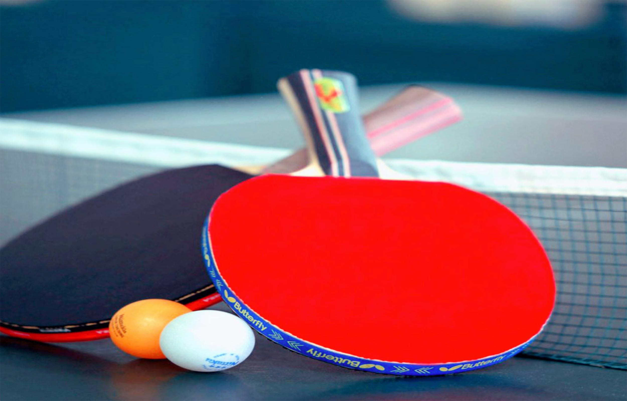Suncity Table Tennis